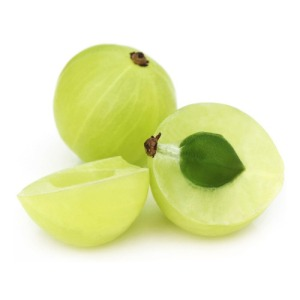 embelica-officinalis-amla-extract-500x500